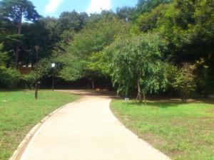 ㈰井の頭公園